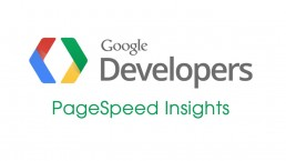 google-pagespeed-strumento