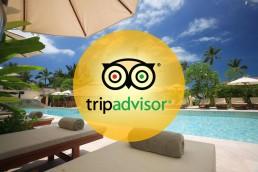 tripadvisor-startup-storia